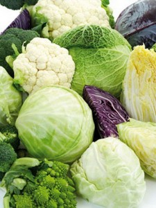 Broccoli, Cabbage and Cauliflower