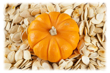 Pumpkin_Seeds