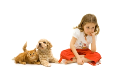 Repulse you Pet Allergy with Simple Steps